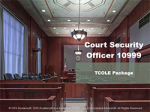 Court Security Officer #10999 (TCOLE) Package