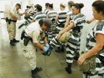 Inmate Rights & Privileges #3502 (TCOLE) Package